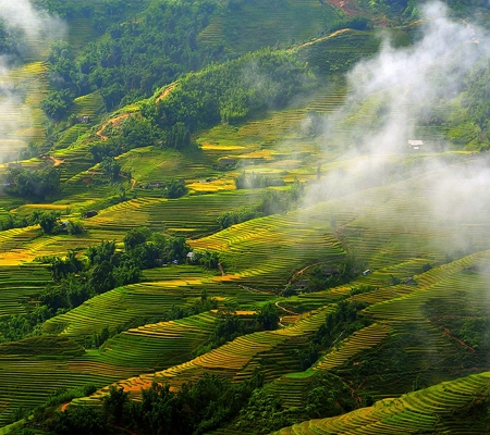 Sapa, the fanciful town in fog